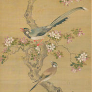 Flowers and bird